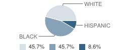 Alachua County Virtual School Student Race Distribution