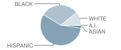 Koa Elementary School Student Race Distribution