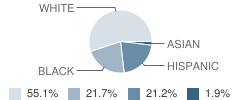 Fau/Slcsd Palm Pointe Research School Student Race Distribution