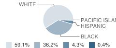 Portal Middle / High School Student Race Distribution