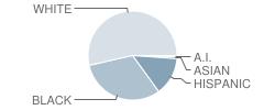 Westside Elementary School Student Race Distribution