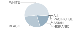 Gray Middle School Student Race Distribution
