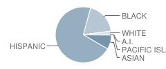 Sequoyah Middle School Student Race Distribution