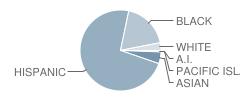 Nesbit Elementary School Student Race Distribution