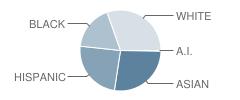Arcado Elementary School Student Race Distribution