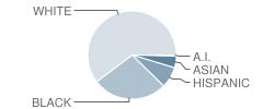 Perdue Elementary School Student Race Distribution