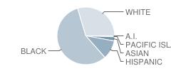Bradwell Institute School Student Race Distribution