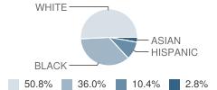 J. T. Reddick Elementary School Student Race Distribution