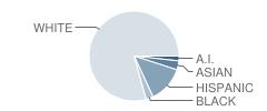 Bickel Elementary School Student Race Distribution
