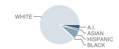 Central Academy (Alternative) Student Race Distribution