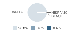 Gallatin Junior High School Student Race Distribution