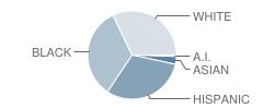 Agassiz Elementary School Student Race Distribution