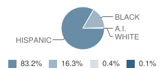 Nobel Elementary School Student Race Distribution