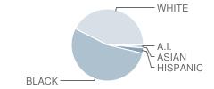 Whittier Primary School Student Race Distribution