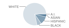 Wheaton Warrenville South High School Student Race Distribution