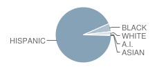 Prieto Math-Science Elementary School Student Race Distribution