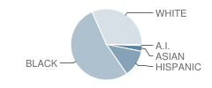 Jonas E Salk Elementary School Student Race Distribution