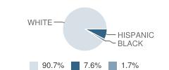 Ell-Saline Middle / High School Student Race Distribution