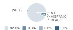 Oxford High School (Junior / Senior) Student Race Distribution