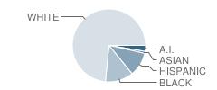 Goddard Academy Student Race Distribution