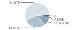 South Christian Elementary School Student Race Distribution