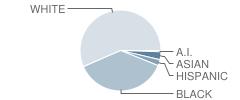 University Elementary School Student Race Distribution