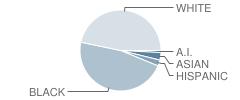 Iberia Middle School Student Race Distribution