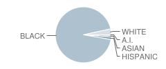 Benjamin Franklin Elementary Math-Science Magnet School Student Race Distribution