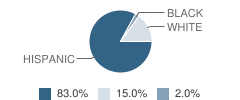 School for Exceptional Studies Student Race Distribution