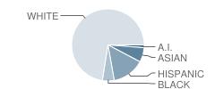 Wamsutta Middle School Student Race Distribution