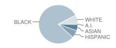 Accokeek Academy Student Race Distribution