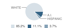Blue Water Learning Academy Student Race Distribution