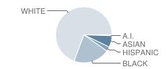 Abbott Middle School Student Race Distribution