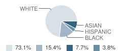 Nso - Independent Study School Student Race Distribution