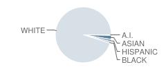Lacrescent-Hokah Middle School Student Race Distribution