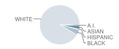 Lacrescent-Hokah Elementary School Student Race Distribution