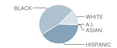 Foreign Language Academy Student Race Distribution
