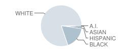 External Sites School Student Race Distribution