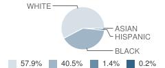 Eupora High School Student Race Distribution