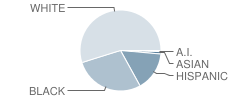 Concord High School Student Race Distribution