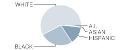 Western Harnett Middle School Student Race Distribution