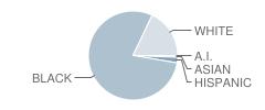 Ahoskie Elementary School Student Race Distribution