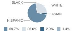 The Annex School Student Race Distribution