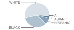 Glassboro Intermediate School Student Race Distribution