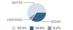 Math,Science&engineering School Student Race Distribution