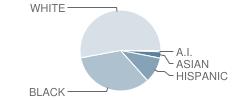 Pemberton Township (Twp) High School Student Race Distribution