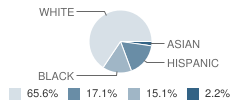 Middle School Student Race Distribution