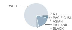 Haskell School Student Race Distribution