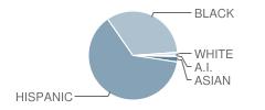Knowledge and Power Preparatory Academy Iii Student Race Distribution