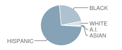 P.S. 396 School Student Race Distribution